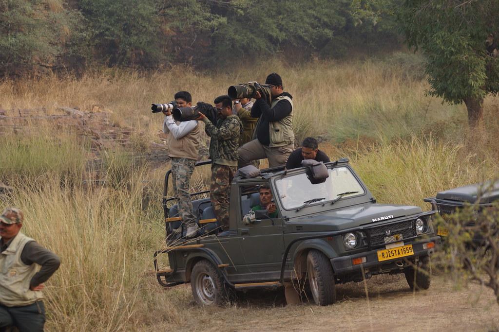 Jeep safari into Ranthambore